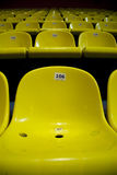 Yellow chairs. Inside the stadium, numbered Royalty Free Stock Photo