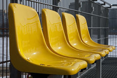 Yellow chairs in a row Stock Image