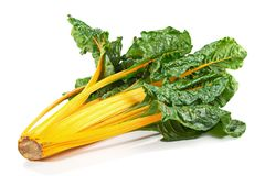 Yellow Chard with Leaves royalty free stock photos