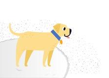 Yellow cheerful dog breed Labrador Retriever smiles. On a fluffy carpet. Vector yellow cheerful dog breed Labrador Retriever smiles Stock Photos