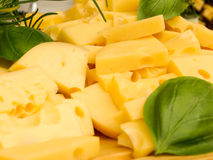 Yellow cheese with basil Stock Images