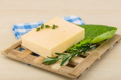 Yellow cheese Stock Image