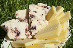 Yellow cheese and cheese with cranberries Stock Photography