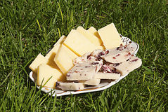 Yellow cheese and cheese with cranberries Stock Images