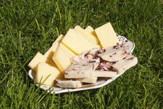 Yellow cheese and cheese with cranberries Stock Image