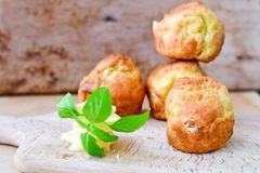 Yellow Cheese and cheese   muffins. Breakfast  from   organic  bio  yellow cheese, home made cheese   muffins  and fresh basil   on a  white wooden background Stock Photography