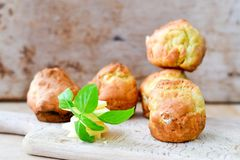 Yellow Cheese and cheese   muffins. Breakfast  from   organic  bio  yellow cheese, home made cheese   muffins  and fresh basil   on a  white wooden background Stock Image
