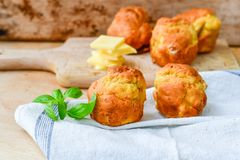 Yellow Cheese and cheese   muffins. Breakfast  from   organic  bio  yellow cheese, home made cheese   muffins  and fresh basil   on a  white wooden background Royalty Free Stock Photography