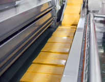Yellow cheese production line for cheese factory.  Royalty Free Stock Photos