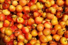 Yellow cherries texture Royalty Free Stock Photo