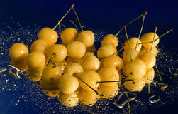 Yellow Cherries In Water Drops Stock Photos