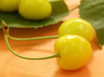 Yellow cherry Stock Image