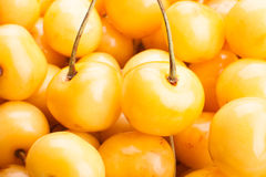 Yellow cherry Royalty Free Stock Images
