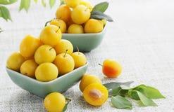 Yellow cherry-plum royalty free stock image