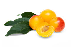 Yellow cherry plums. Three yellow cherry plums and a half cherry plum on a white background Royalty Free Stock Photo