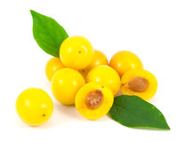 Yellow cherry plums with leaves. On white background Stock Photos