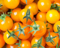 Yellow cherry tomatoes background Stock Image