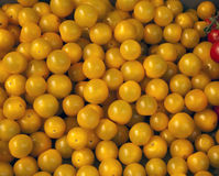 Yellow cherry tomatoes. On market Royalty Free Stock Photo