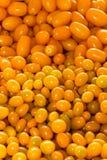 Yellow Cherry Tomatoes Stock Photos