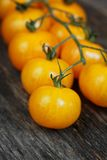 Yellow cherry tomatoes Stock Image