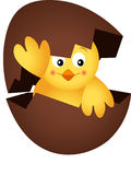 Yellow Chick in a Chocolate Egg Royalty Free Stock Images