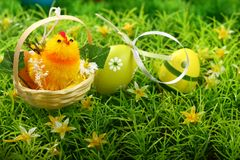 Yellow chick and easter eggs Stock Photos