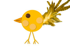 Yellow Chick With Feather Tail Stock Photography