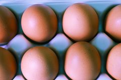 Yellow chicken eggs in a carton with empty space, background royalty free stock photography