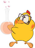 Chicken the chemist cartoon Stock Photos