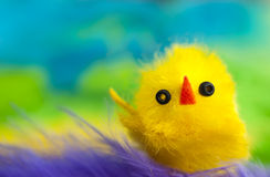 Yellow chicken toy colorful background. Macro of a yellow Easter fluffy chicken toy on colorful background. Spring or Easter holiday image stock photo
