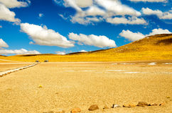 Yellow Chilean Landscape Royalty Free Stock Photos