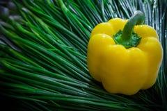 Yellow Chili fresh Royalty Free Stock Photography