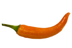 Yellow Chili pepper Stock Images