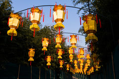 Yellow chinese lantern with messages wishing good luck, health, peace and prosperity Stock Photos