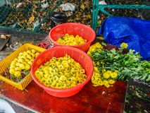 Yellow Chrysanthemum flower for making Indian Garland  in Little India Town. Yellow Chrysanthemum flower for making Indian Garland in a garland store in Little royalty free stock image