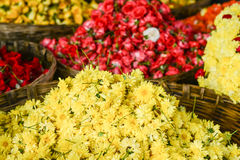 Yellow Chrysanthemum Flowers in a Basket Stock Images