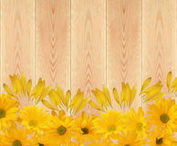 Yellow chrysanthemum flowers on wooden planks texture close-up b royalty free stock photography