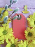 Yellow chrysanthemum spring on a pink wooden background, mother`s day, tag,. Yellow chrysanthemum on a pink wooden background, mother`s day tag spring Stock Photos