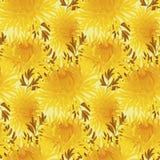 Yellow chrysanthemum repeatable motif Stock Images