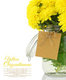 Yellow chrysanthemum in vase Royalty Free Stock Photography