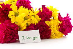 Yellow chrysanthemums and red carnations Royalty Free Stock Image