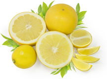 Yellow citrus royalty free stock photo