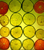 Yellow citrus background. Slices of citrus fruits on yellow lighted background stock image