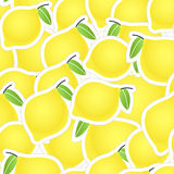 Yellow citrus seamless background Stock Image