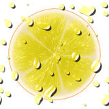 Yellow citrus slice Royalty Free Stock Images
