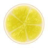 Yellow citrus slice Stock Photo