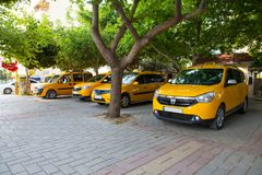 Yellow city taxis stand in the shade of trees