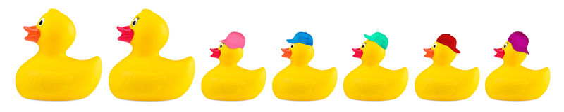 Yellow classic rubber bath duck toy cool family. Concept row isolated on white background royalty free stock photo