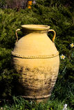 Yellow clay pot Stock Image