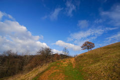 Yellow clay road and blue sky in early spring. In the mountains Royalty Free Stock Images